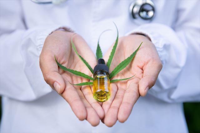 大麻草を手に持った画像